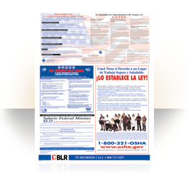 Federal Labor Law Poster- English Edition